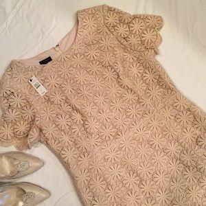 Price Drop 🌸NWT Gorgeous Talbots Blush Lace Dress